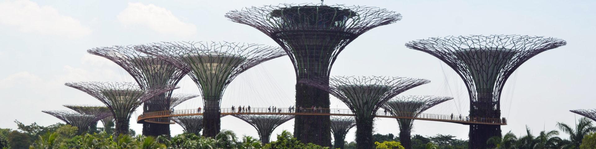 Garden Singapore